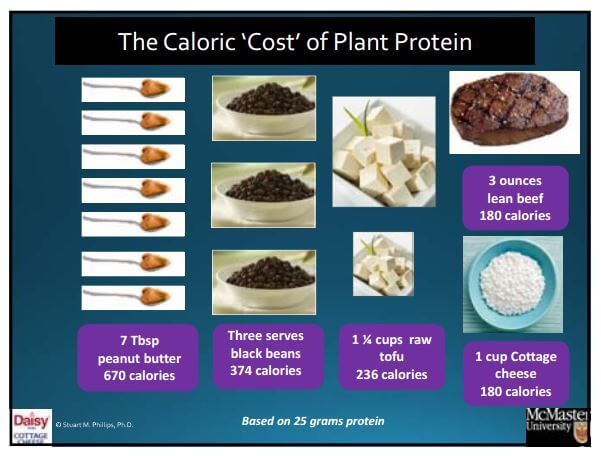 Caloric Cost of Plant Proteins