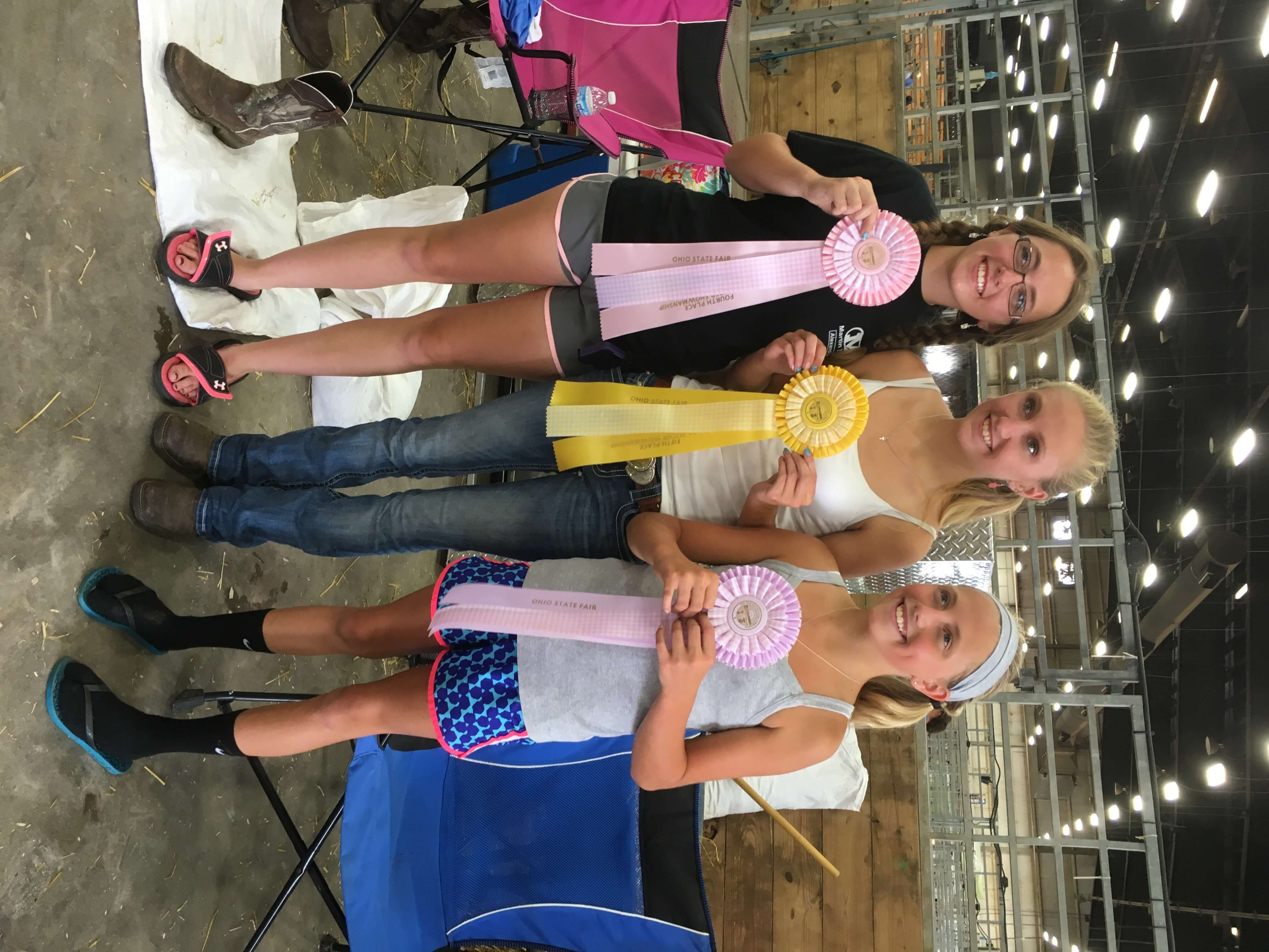 state-fair-ribbons-rotated